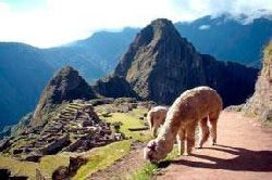 Cusco Imperdible